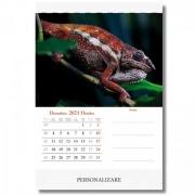 Calendare personalizate 2021
